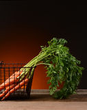 Carrots in Wire Basket With Warm Background Royalty Free Stock Photography