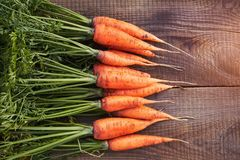 Carrots With Leaves Beam On Wood Background. Fresh Carrot With Home Garden Farm. Free Space For Your Text. Stock Photo