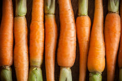 Carrots on a wooden background Stock Image