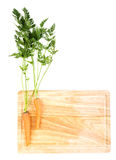 Carrots on wooden board Stock Images