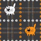 Carroty und weiße Katzen Stockfotos