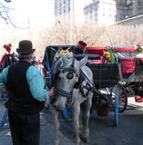 Carrozze a cavalli, Central Park, New York, NY, U.S.A. fotografia stock libera da diritti