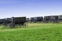 Carrozzini del nero di Amish parcheggiati in pascolo verde Fotografie Stock