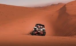 Carrozzino che corre nel deserto fotografia stock libera da diritti