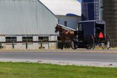 Carrozzino di Amish sulla carreggiata rurale Fotografia Stock Libera da Diritti