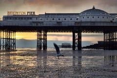 Carrusel del embarcadero de Brighton Imagenes de archivo