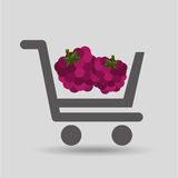 Carry buying raspberry fruit icon graphic Stock Image