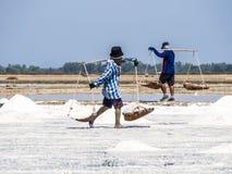 Carry salt on a shoulder. In salt farm Royalty Free Stock Photos