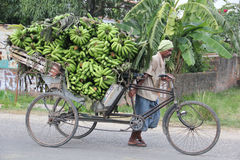 Carrying bananas in Nepal Royalty Free Stock Photo