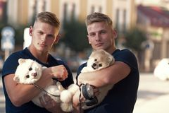 Always carrying about each other. Twins men hold pedigree dogs. Spitz dogs love the company of their family. Muscular. Men with dog pets. Happy twins with stock photo