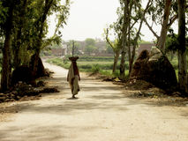 Carrying the load of half the world. This is image of a road in rural interiors of Uttar Pradesh, India where women are the primary workers in the fields Royalty Free Stock Images