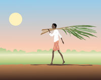Carrying sugar cane Stock Images