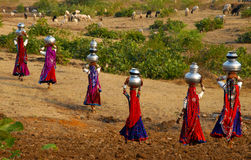 Carrying Water. A group of tribal women is carrying pitchers of drinking water on their head in rural India Stock Image