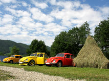 Cars. Three old cars near a camping place Royalty Free Stock Photos