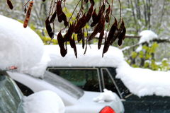 The cars, covered with snow  during a blizzard. Unfocused image Stock Photography