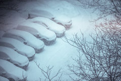 Cars covered in snow on a parking lot in the residential area du Royalty Free Stock Image