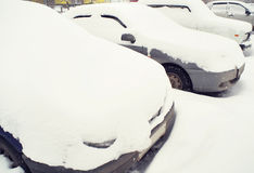 Cars covered with snow Stock Image