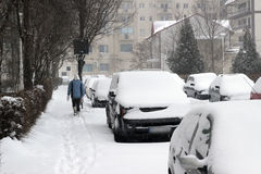 Cars covered with snow in winter. Cars covered in snow in front of suburban townhouses after a big winter snowstorm royalty free stock photo