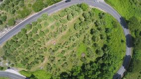 Cars driving on winding road between trees and bushes, aerial view, Italy. Stock footage stock video footage