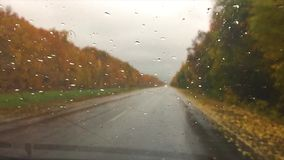 Cars go on the road asphalt travel. autumn beautiful view forest, raindrops on the glass car blurred background slow. Cars go on the road asphalt travel. autumn stock video