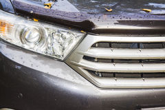 Cars headlight Stock Image