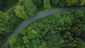 Cars moving on beautiful road in forest in Germany. Germany forest road top view. Car crossing the road in Germany. Beautiful road in forest in Germany. View stock video
