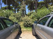 Cars parked in the countryside Royalty Free Stock Photo