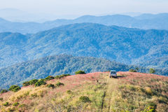 Cars parked on a hill overlooking a beautiful mountain. Royalty Free Stock Photo
