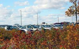 Cars in the parking lot. Cars in a parking lot hiding in shrubs Royalty Free Stock Photography