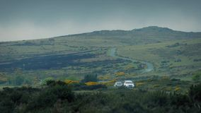 Cars Passing On Road Through The Wilderness stock footage