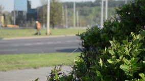 Cars roundabout worker stock footage