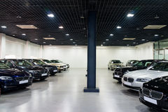 Cars for sale in showroom. Lined up cars in dealership showroom for sale Royalty Free Stock Photography