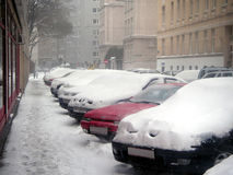 Cars under snow. A winter day in Vienna, Austria. Parked cars trapped under  snow Royalty Free Stock Photos