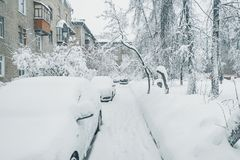 Cars under the snow. Stock Photo