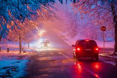 Cars in winter forest Stock Photo