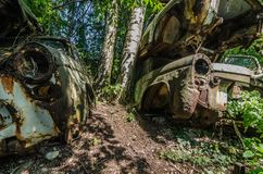 cars in a wooded area Stock Photos