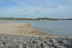 Carsington vatten Arkivfoton