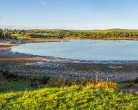 Carsington water Stock Image