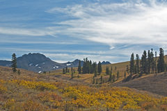 Carson Pass Stock Image