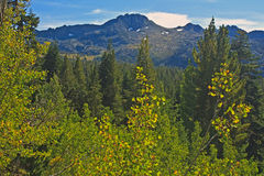 Carson Pass Royalty Free Stock Images