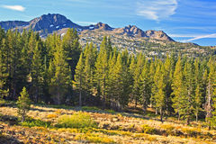 Carson Pass Royalty Free Stock Photos
