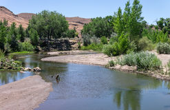 The Carson River Stock Images