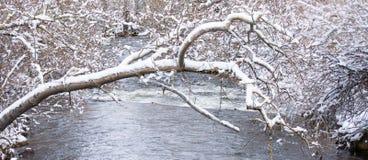 Carson River in Sneeuw Royalty-vrije Stock Afbeeldingen