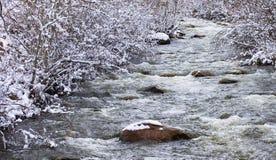 Carson rzeka w zimie Fotografia Stock