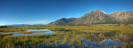Carson Valley Reflection Panorama image stock