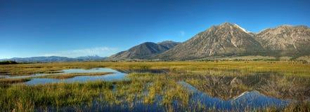 Carson Valley Reflection Panorama Stockbild
