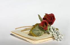 Cartão _2 do convite Imagem de Stock