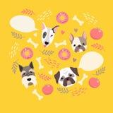 Cartão bonito da cor da ilustração do cão Imagens de Stock