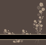 Cartão bonito da flor Foto de Stock