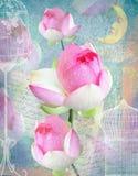 Cartão bonito das felicitações com peônias, pilhas e lua Fotos de Stock Royalty Free